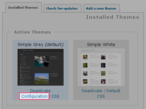 Link to configure your theme in the administration