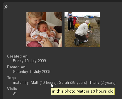 Plugin Birthdate: on the page of the photo, next to each tag Piwigo displays the age