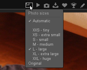 New plugin Automatic Size adds an option in the size selection box.