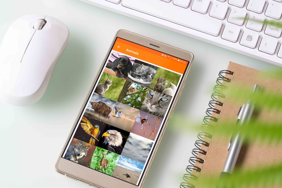 piwigo android app